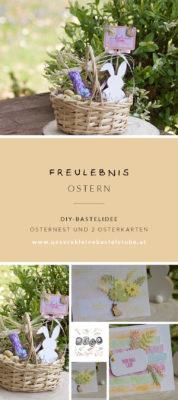 ukbs_pinterest-OSTERNEST-osterkarten-diy-selber-machen
