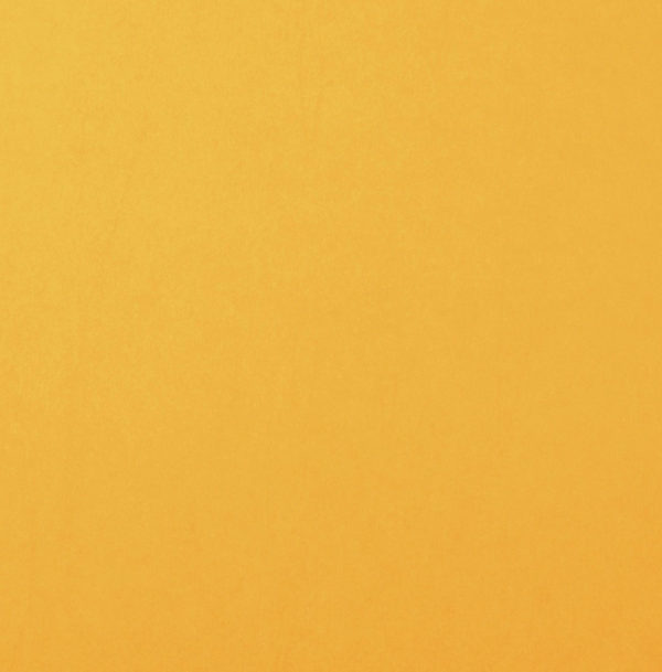 Uni Papier A4 Glatt Bee | Unsere kleine Bastelstube - DIY Bastelideen für Feste & Anlässe