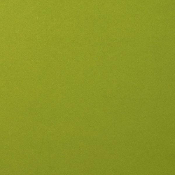 Uni Papier A4 Glatt Fern 10 Blatt | Unsere kleine Bastelstube - DIY Bastelideen für Feste & Anlässe