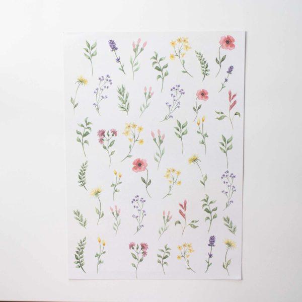 Ausschneidebogen Wiesenblumen