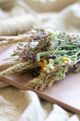 Wiesenblumen trocknen und pressen DIY