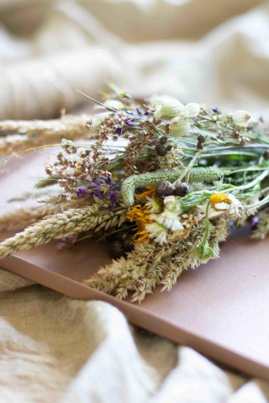 Weisenblumen-trocknen-pressen
