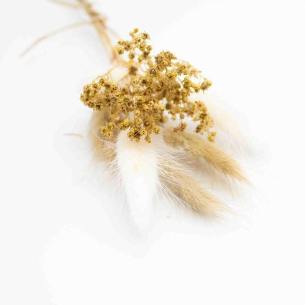 Trockenblumen Strauß klein Natur