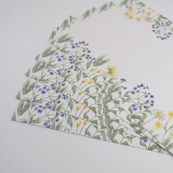 Postkarten Wiesenblumen in Blau 5 Stück3