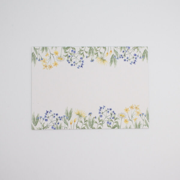Postkarten Wiesenblumen in Blau 5 Stück