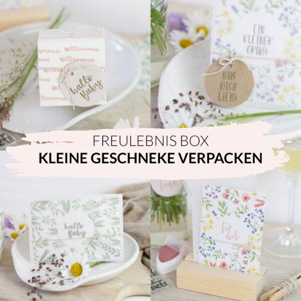 Freulebnis Box Kleine Geschenke verpacken